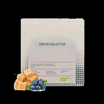 Etiopie HALO BERITI natural - The Coffee Collective